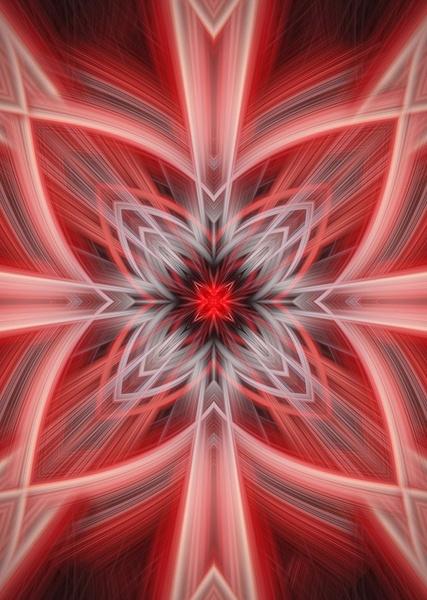 No.10-Red-Floral-Pattern-fractal-art - Fine Art