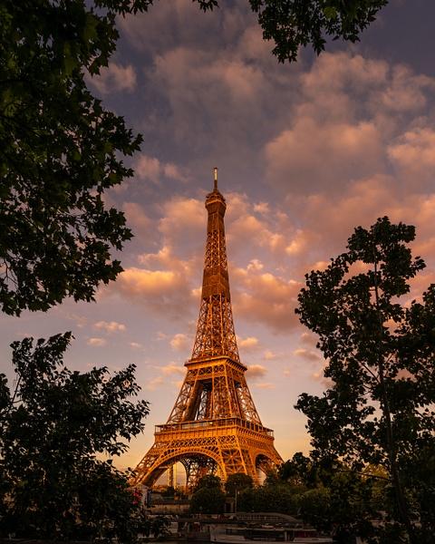 Eiffel-Tower-Tree-Frame-Sunset - Paris - Thomas Speck Photography