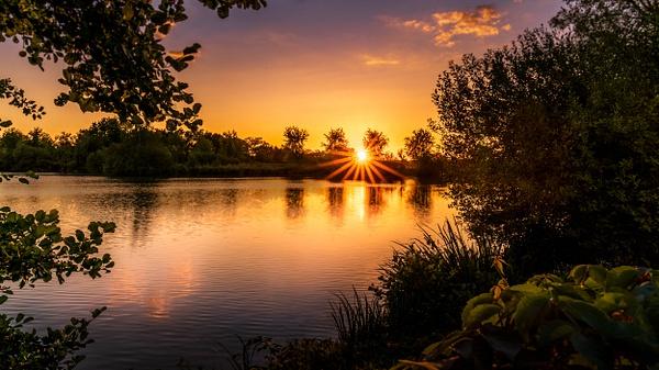 Pond-La Dombes-France-sunset - Paris Cityscape France Eiffel Tower Pont Alexandre 3 Pont des Arts
