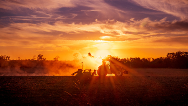 La Dombes-Tractor-Field-Crop-Sunset-France - Landscapes - Thomas Speck Photography
