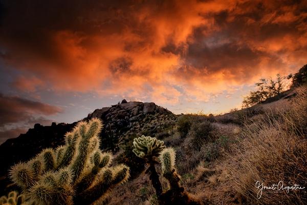 _C2A8080-Edit-2-Edit - Landscapes - Grant Augustine Photography