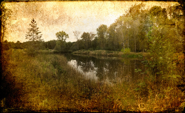 Madeline island pond - Special Processes - Joanne Seador Photography