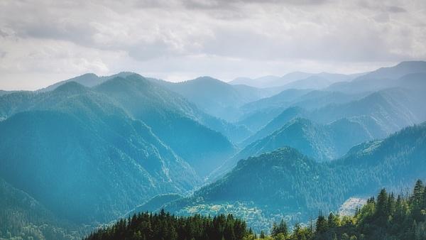Through the misty mountains by Arian Shkaki