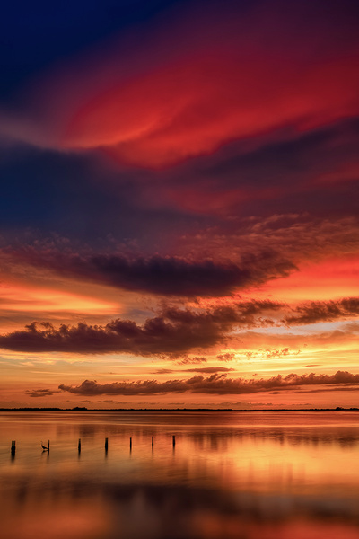 N4C-Pineisland - Key West, Florida - Bill Frische Photography