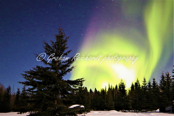 7-Aurora Borealis or Northern Lights taken at Chandlers farm, out from Fairbanks - Aurora - Graham Reichardt Photography