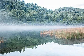 mist over lake Rotoma NZ A4 canvas print $55 - Shops - Graham Reichardt Photography