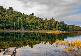 Lake Rotoma NZ on canvas A3 print $75 - Shops - Graham Reichardt Photography
