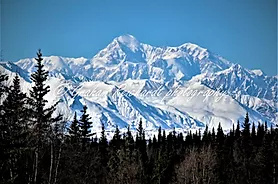 Mt Denali from Alaska rail A3 canvas print $75 - Shops - Graham Reichardt Photography