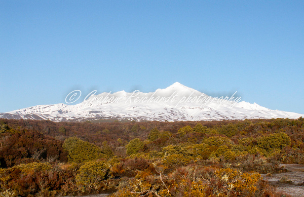 Ruapehu from Desert Rd NZ.  Canvas print A2 size $85 - Shops - Graham Reichardt Photography