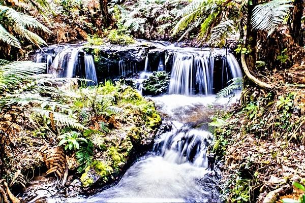 small bush waterfall. Kerosene Creek - NZ Scenery - Graham Reichardt Photography