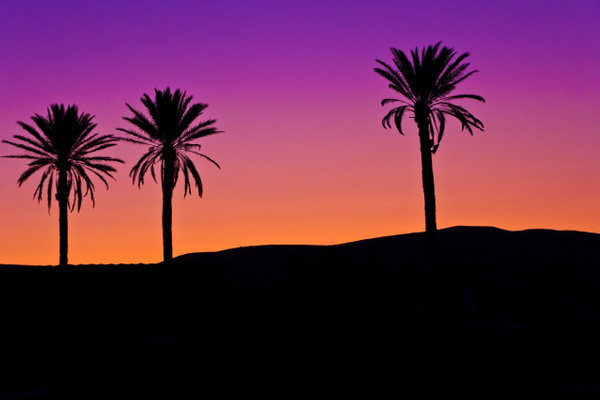 Sunset in the Judean Desert I by Brad Balfour