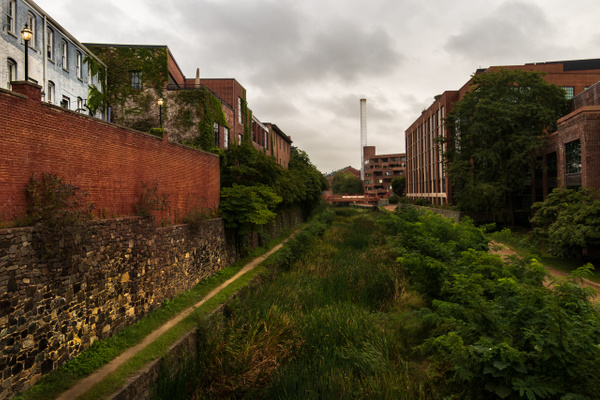C&O Canal? Where's the Canal? by Brad Balfour