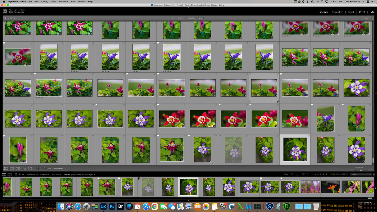 My Process for Storing & Organizing my Images- June 7,2021