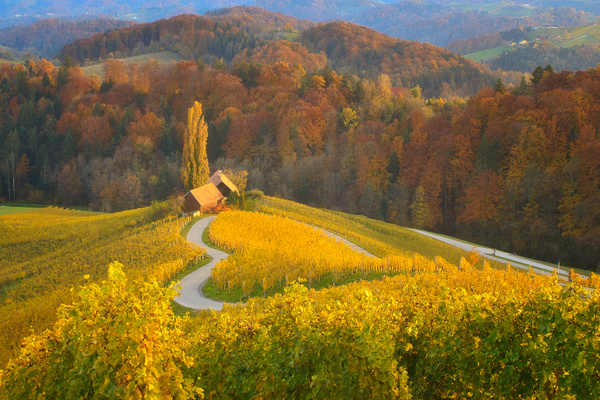 Herzerl Strasse Steiermark - Landscape photographyDelfino photography