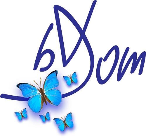 Dominique-Bruyneel