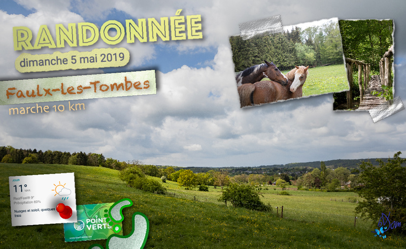 ADEPS 2019 Faulx les tombes