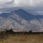 Arizona 4-2021