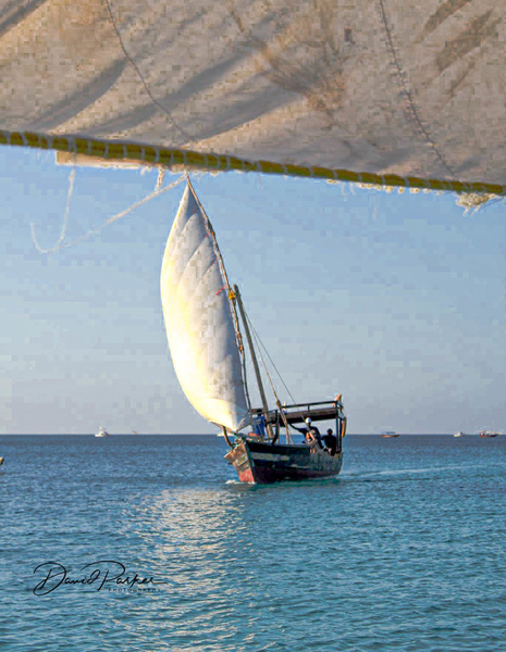 Dhow, off of Zanzibar by DavidParkerPhotography