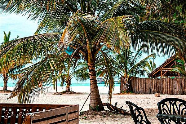Zanzibar Resort3 by DavidParkerPhotography