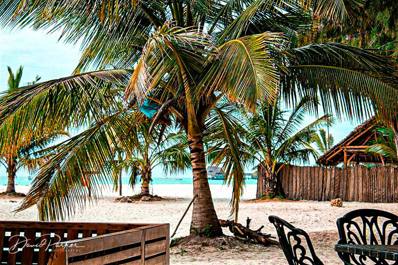 Zanzibar Resort3