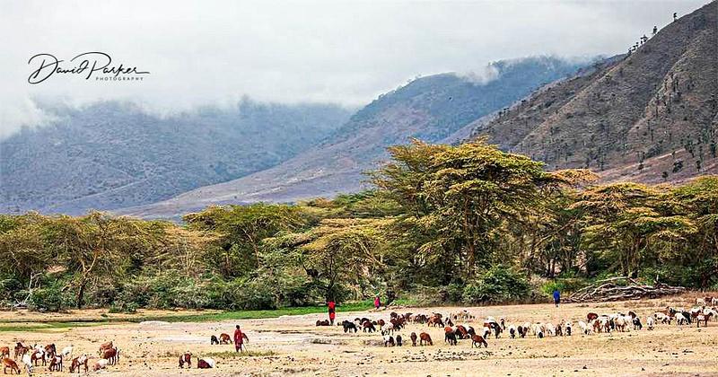Maasai in the Ngorongoro Crater, Tanzania
