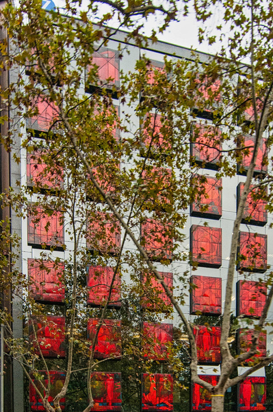2013_001 - Behind The Trees - Barcelona by ALEJANDRO...