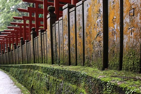 japan-4479 by Phil Steele