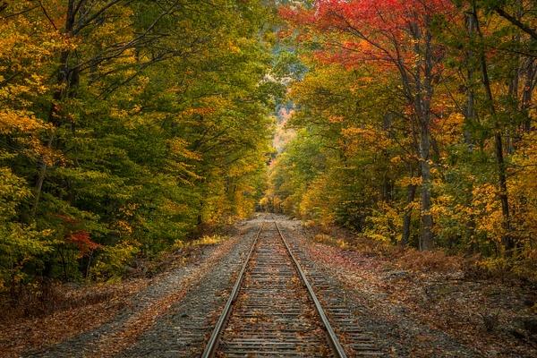 NH Railroad Tracks