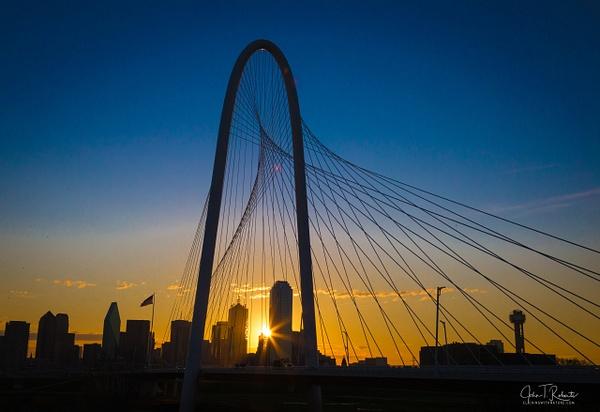 Good Morning Dallas - Texas - John Roberts - Clicking With Nature®