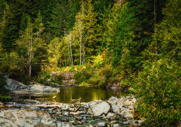 Upper Sooke Potholes - Landscape - McKinlay Photo