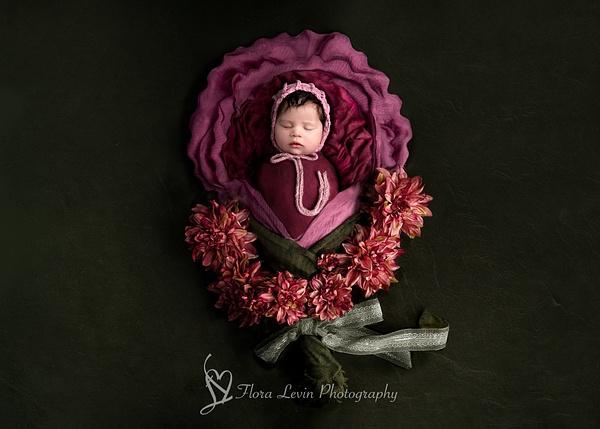Baby Girl Flower Prop - Newborn - Flora Levin Photography