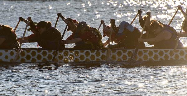 Seattle: Rowing on Lake Washington - Spotlight: Seattle - Jonathan C. Watson Photography