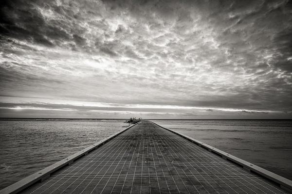 Higgs Beach Pier