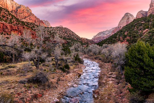 Zion-1 - Fine Art Photographer and Wall Art Photography