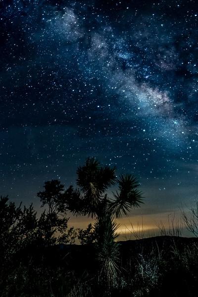 Joshua Tree Milky Way-1 - Landscape Photography - John Dukes Photography