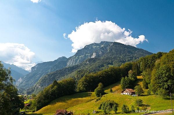 Swiss by AntonAlekseev by AntonAlekseev
