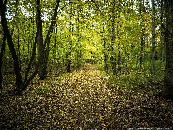 2012-10-19_085131_X10_1977 by PavelEremeev