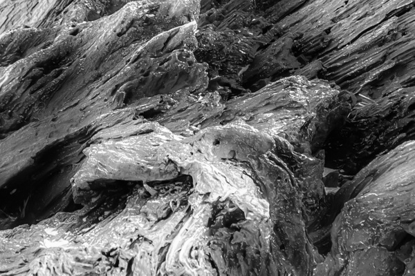 Abstract 13_tash - Abstract - MJ Tash Photography