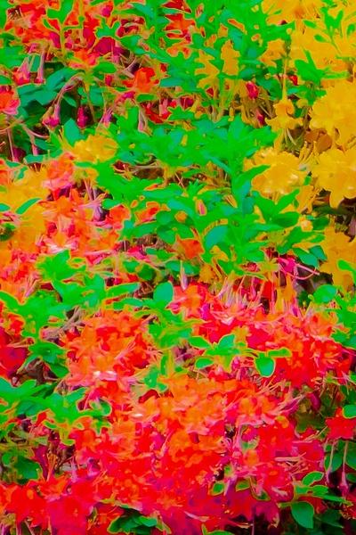 Fall - Abstract - MJ Tash Photography