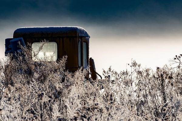 Wondering_tash - Landscapes - MJ Tash Photography