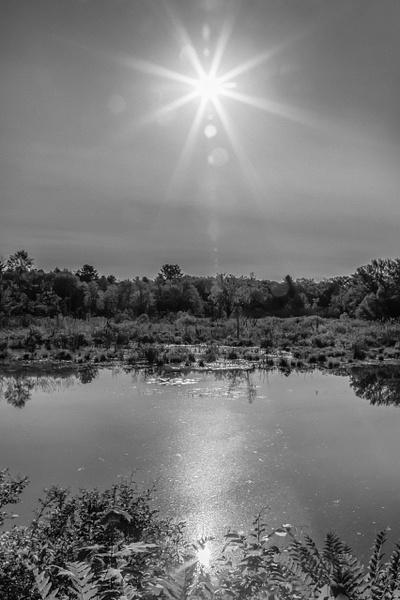 Canoe Meadows_tash - Landscapes - MJ Tash Photography