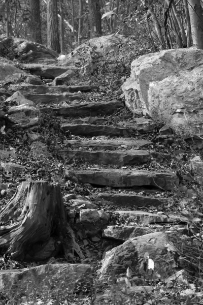 6H1A3851-Edit - Home - MJ Tash Photography