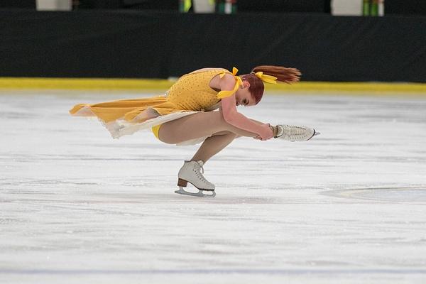 Figure Skating-18 - Figure Skating - Leigh Chambers Wheat Designs