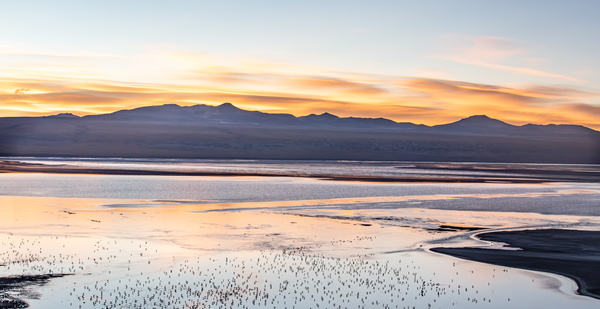 Laguna Coronado (Red Lake) by Michael McNamara