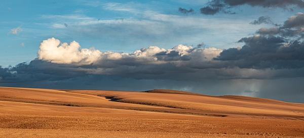 High Desert plain by Michael McNamara