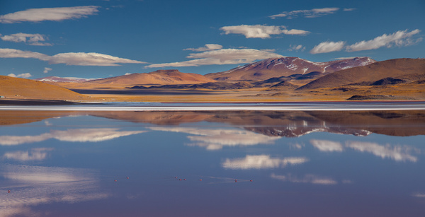 Reflections in the red lake by Michael McNamara