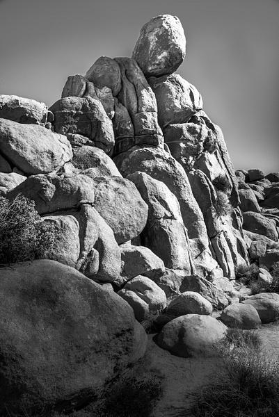Desert Mourning by Jack Kleinman