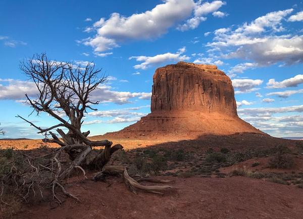 Monument Valley II, Arizona by Jack Kleinman
