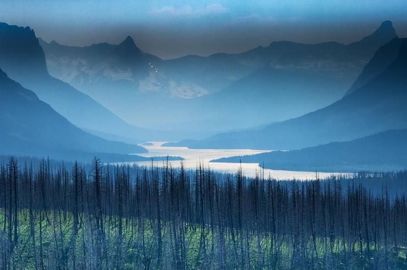 Burnt Patch, Glacier Park