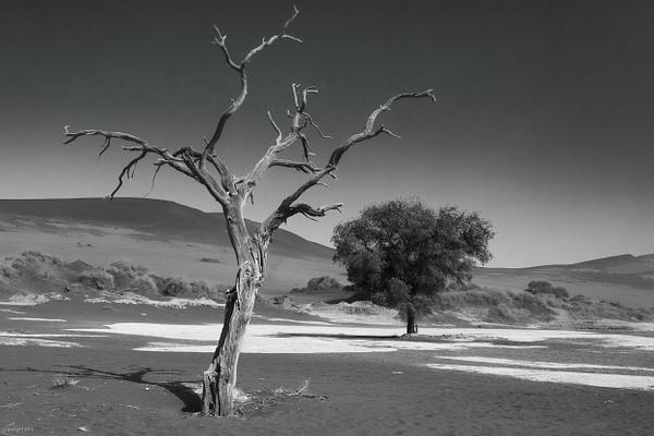 Namibian Desert-105-Edit.jpg by Jack Kleinman